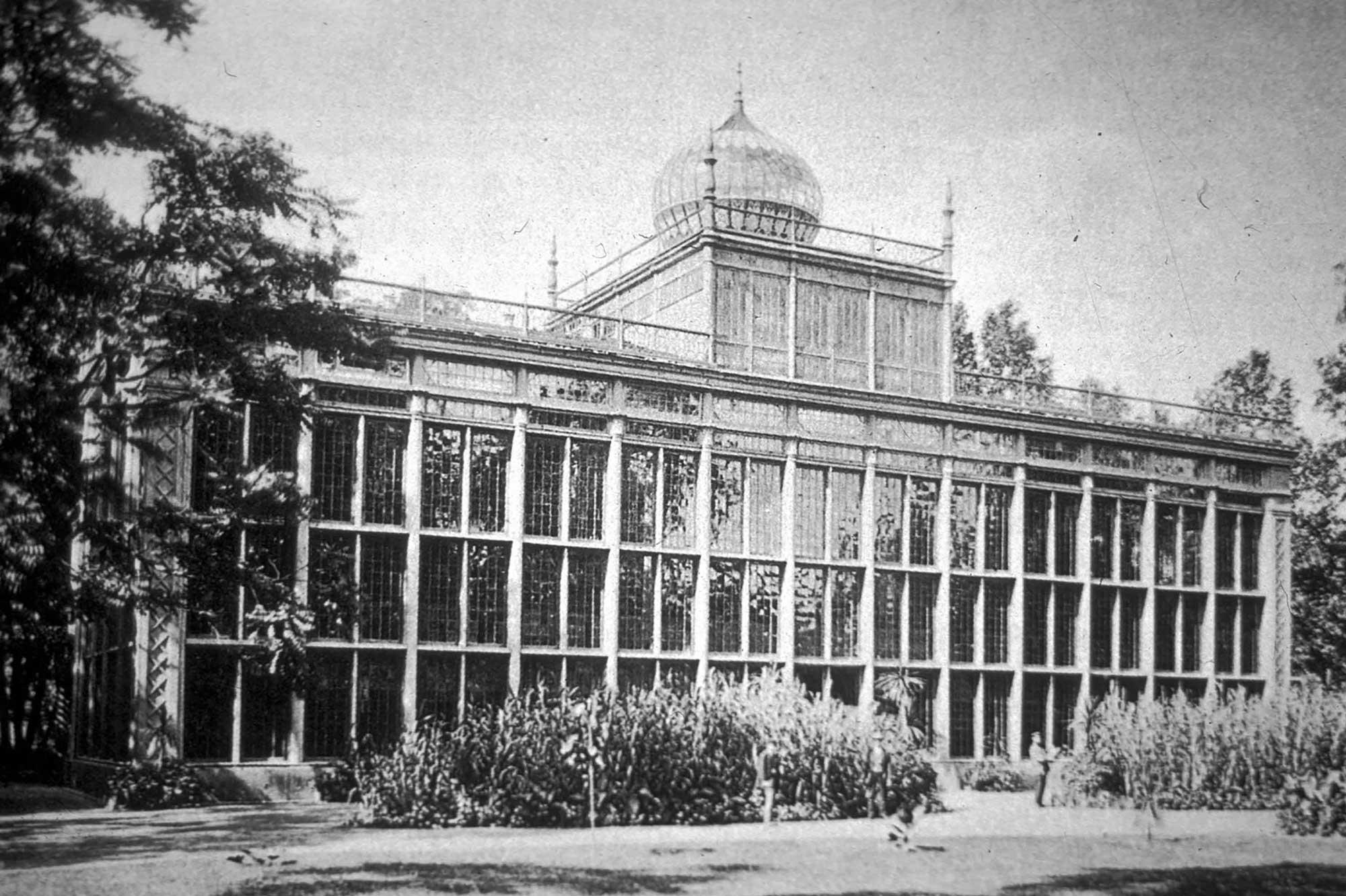 Historische Fotografie des Palmenhauses