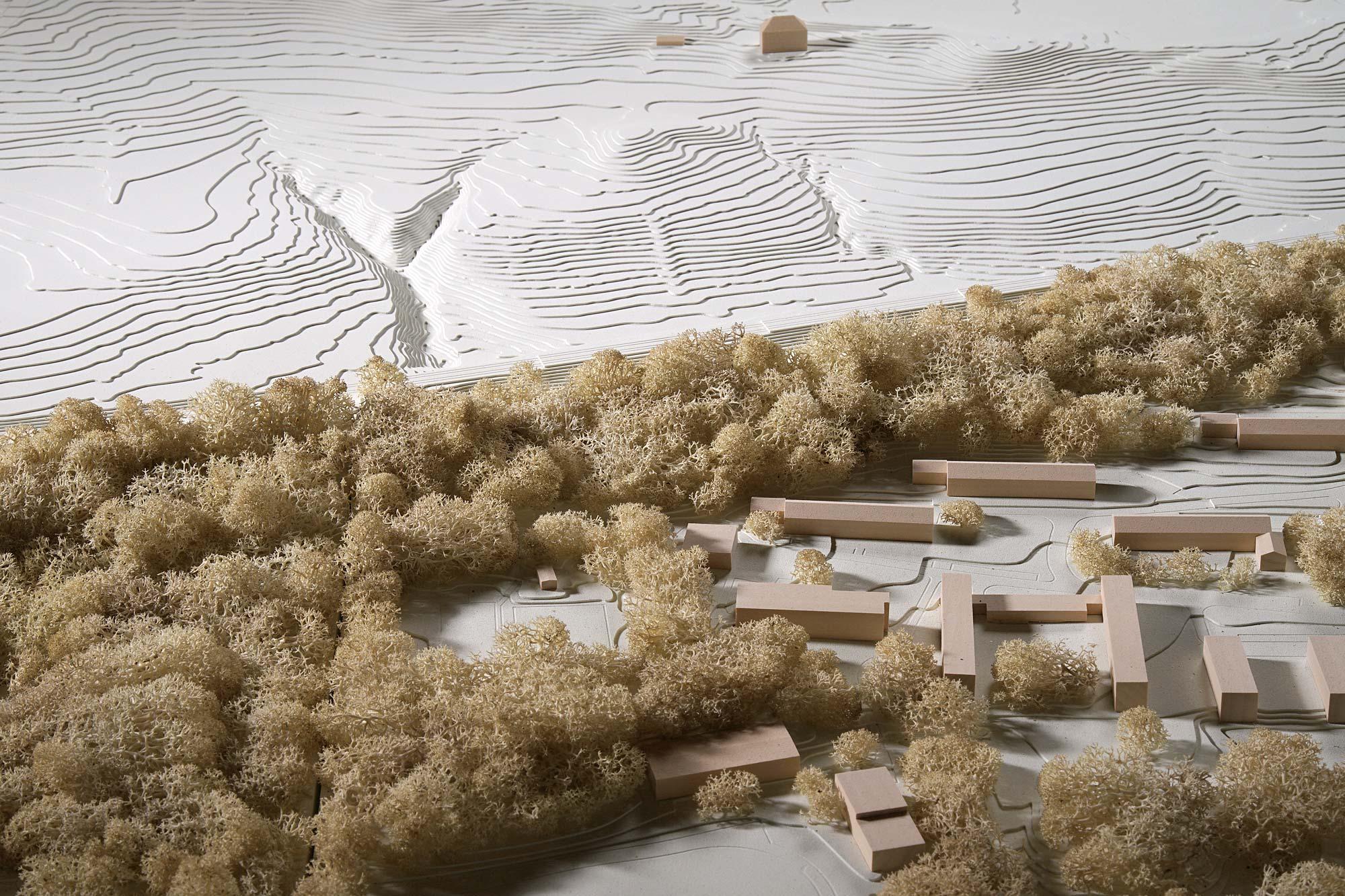 Vegetation und Freiraum im Modell